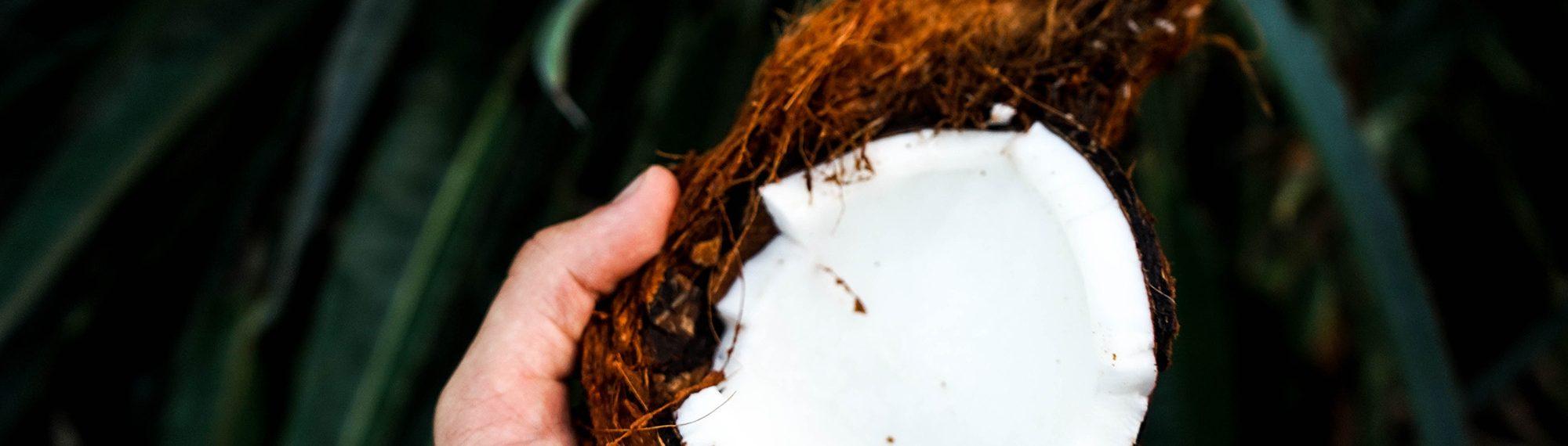 Coconut Oil Alison Wells